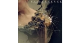 Imperfection Evanescence