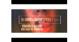 Blood Is Pumpin (Dj Bíró & Adam Steel Private Edit 2017) Voodoo & Serano