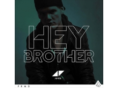 Avicii - Hey Brother