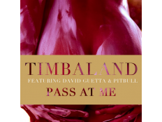 Timbaland feat. Pibull & David Guetta - Pass At Me