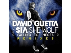 David Guetta feat. Sia - She Wolf (Falling to Pieces)