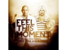Pitbull feat. Christina Aguilera - Feel This Moment