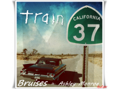 Train feat. Ashley Monroe - Bruises