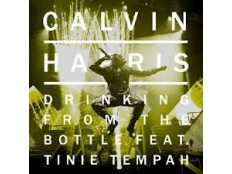 Calvin Harris feat. Tinie Tempah - Drinking From The Bottle