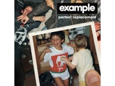 Example - Perfect Replacement