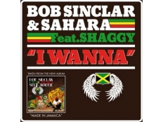 Bob Sinclar feat. Sahara & Shaggy - I Wanna