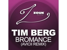 Tim Berg - Bromance (Aviciis radio edit)