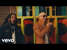 Pitbull feat. Stephen Marley - Options