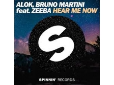 Alok feat. Bruno Martini & Zeeba - Hear Me Now