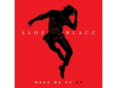 Aloe Blacc feat. Pharrell Williams - Love Is The Answer