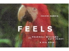 Calvin Harris feat. Pharrell Williams & Katy Perry & Big Sean - Feels