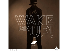 Avicii feat. Aloe Blacc - Wake Me Up